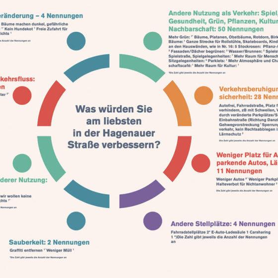 Umfrage Hagenauer